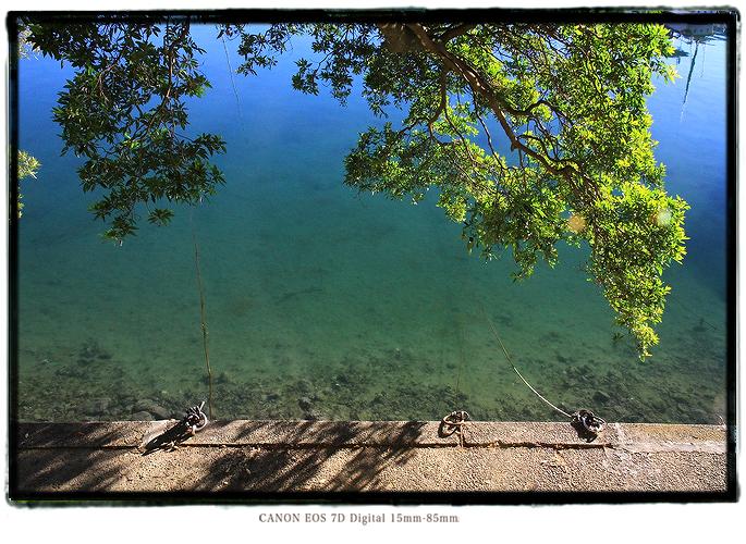 尾鷲の飛鳥神社1312kii0105.jpg