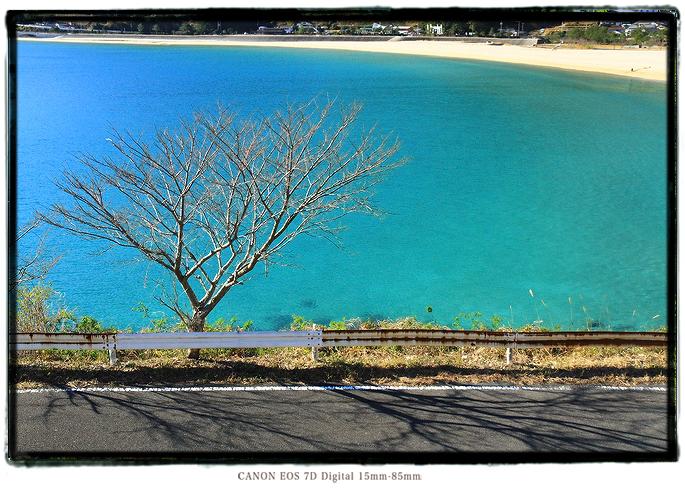 新鹿海岸の海の色1312kii01058.jpg
