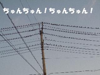 2011091401.jpg