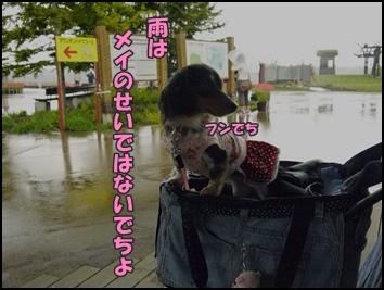 雨女・・・