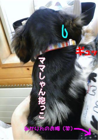 狂犬病注射の後1