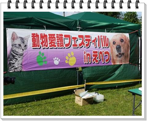 動物愛護1