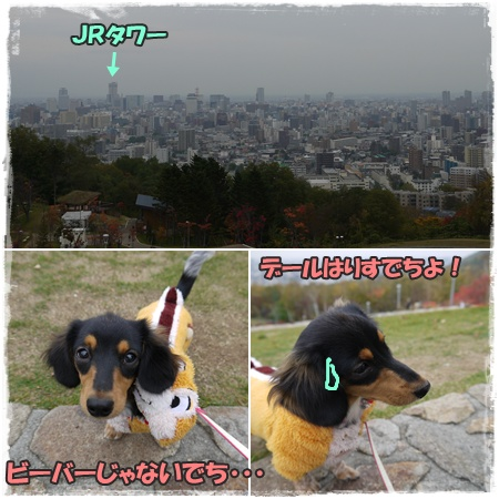 旭山記念公園4