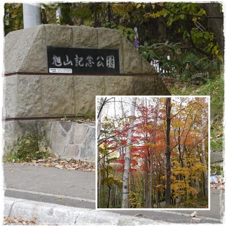 旭山記念公園1