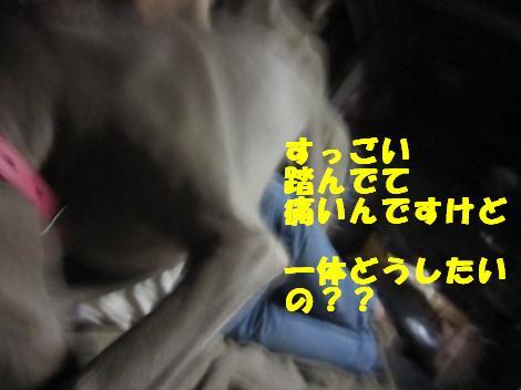 IMG_8063_convert_20110524112937.jpg