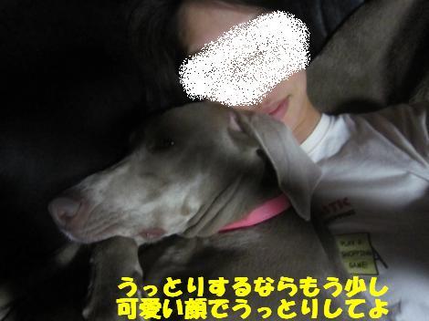 IMG_8074_convert_20110524113836.jpg