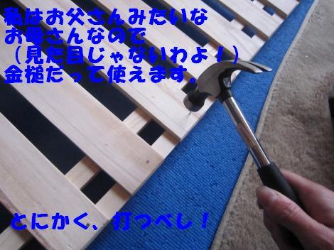 IMG_8191_convert_20110728131838.jpg