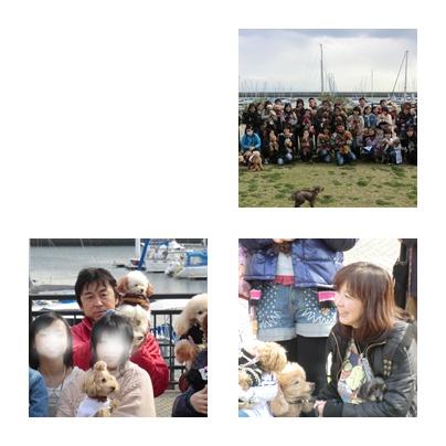 cats_20120408205047.jpg