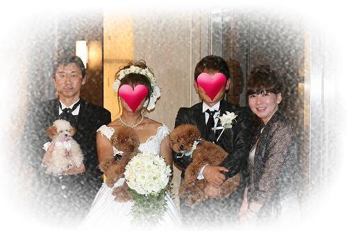 image_20110602081151.jpg