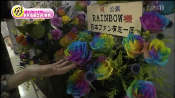虹ちゃん祭り_楽屋_5