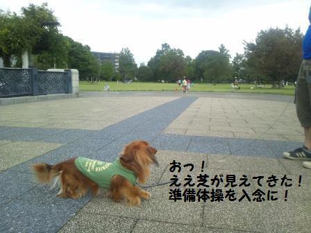 武蔵国分寺公園4