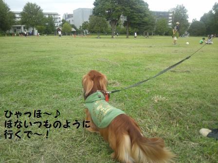 武蔵国分寺公園6