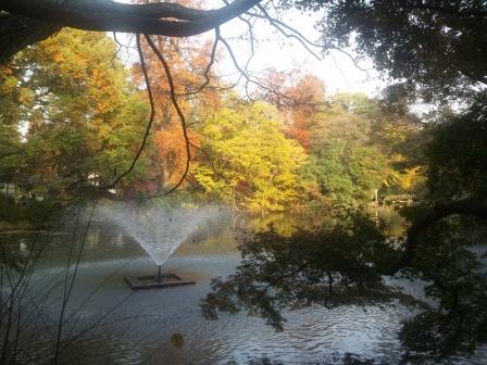 秋の井の頭公園3