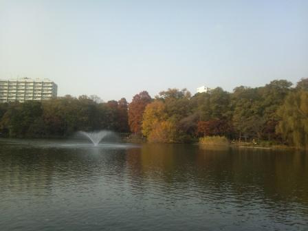 秋の井の頭公園4