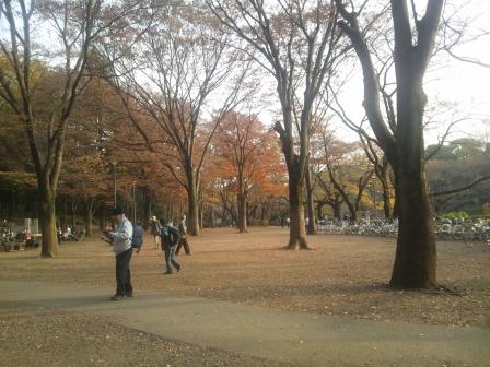 秋の井の頭公園6