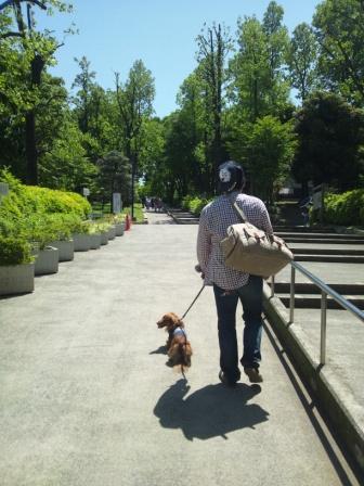 代々木公園1