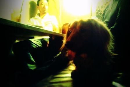 渋谷夜カフェ3