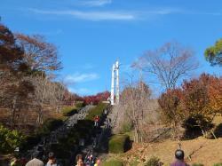 徳島県立神山森林公園イルローザの森