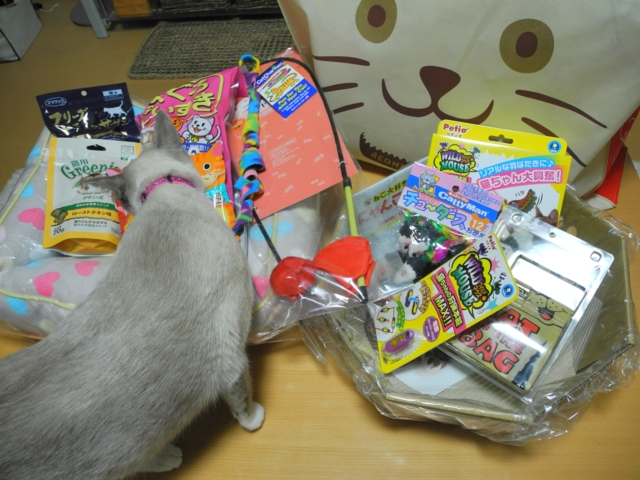 LuckyBagThisYearAlso1