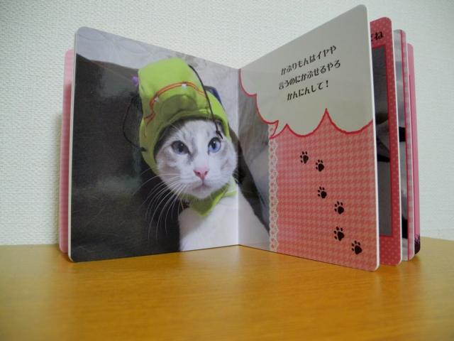 Hina'sPictureBook3