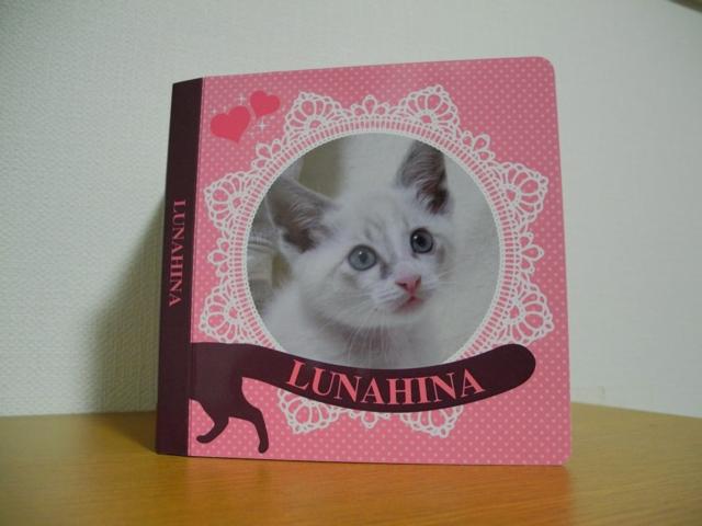 Hina'sPictureBook1