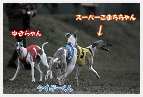 かいちょー3頭