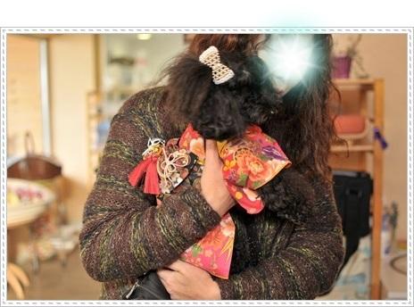シェリーママに抱っこのルナ