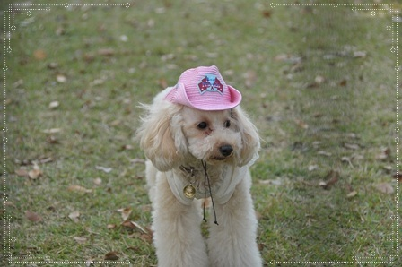 むーさん帽子