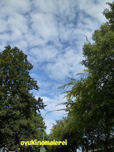 秋雲か?2011.8.28