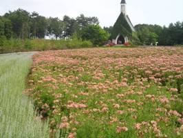 牧歌の里の教会