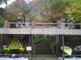 岐阜公園 菊人形