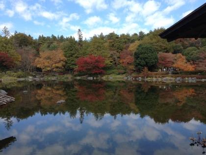 昭和記念公園20