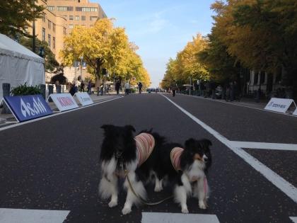 日本大通り18