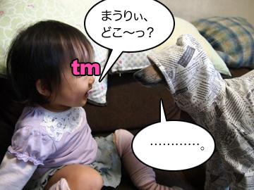 20121104tm01.jpg