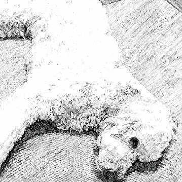 SketchGuru_20121014205438.jpg