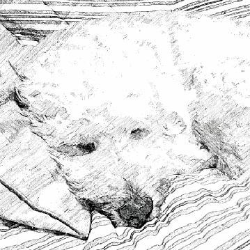 SketchGuru_20121014205615.jpg