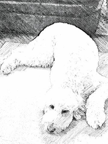 SketchGuru_20121015075548.jpg