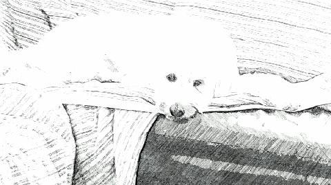 SketchGuru_20121015075753.jpg