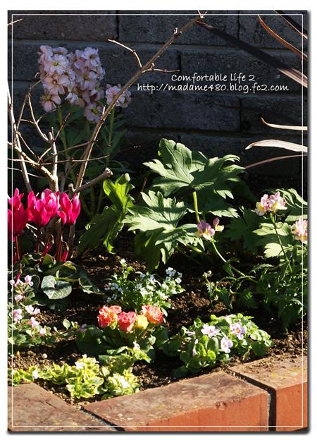 △花壇寄せ植え風web用C