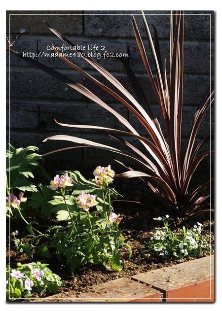 △花壇寄せ植え風web用D
