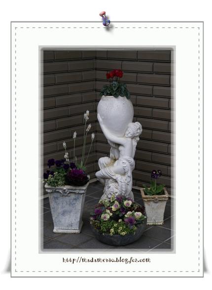 玄関の花々web用