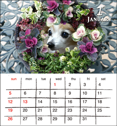リングカレンダー1月web用