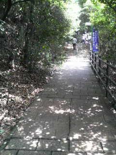 咲夜さんの金華山旅日記 (31)