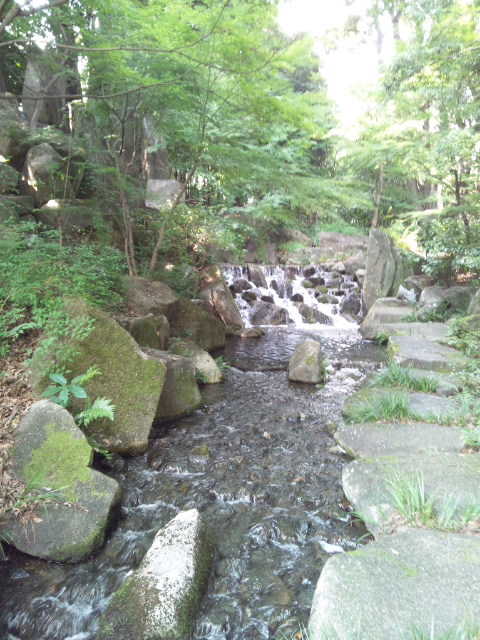 咲夜さんは徳川園へ行かれました (6)