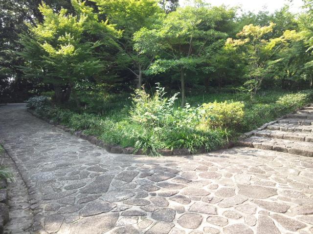 咲夜さんは徳川園へ行かれました (8)