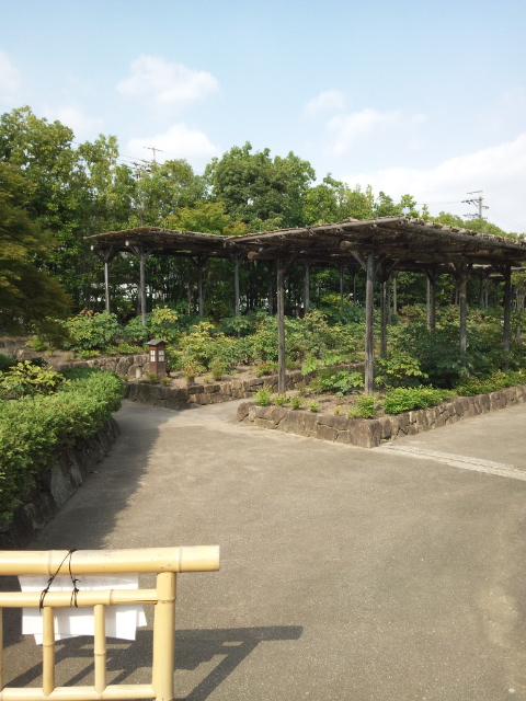 咲夜さんは徳川園へ行かれました (23)