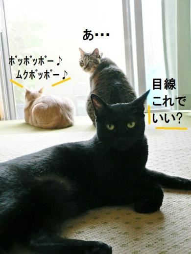 雲丹専務&ささっちゃん部長&きなっちゃん社長