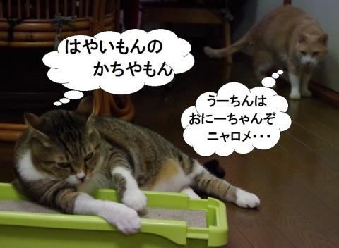 雲丹専務&ささっちゃん部長