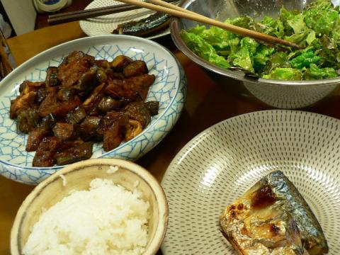 2011年5月14日夕食