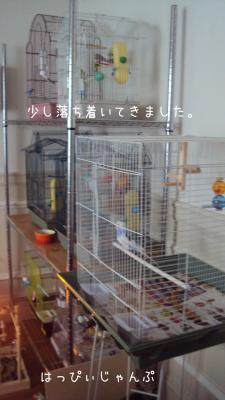 DSC07142_convert_20130124075511.jpg